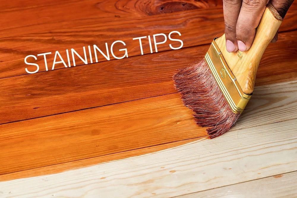 staining tips bargain dumpster