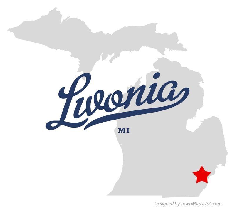 Bargain Dumpster Livonia MI